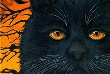 Samhain ~ Halloween ~ Autumn / by Renee DiLorenzo