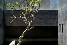 gardenS & waterR featuresS