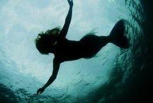 Mermaids / by Renee DiLorenzo