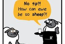 Ram and Sheep Puns / Some sayings and humor using the words Ram and Sheep! / by Angelo State University Alumni Association