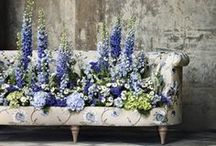 Summer Entertaining / On the 5th June 2014 I will be hosting a master class with the wonderful florist John Carter on Summer Entertaining. I love entertaining friends and family and here is some of my inspiration for this summer. Purchase your ticket to my master class here http://bit.ly/1iGUPQ0