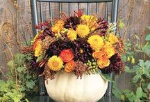 Fall and Autumn Flowers / Pretty flower arrangements for fall, Harvest,Halloween, Thanksgiving