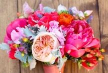 In Bloom / Flower displays we LOVE!