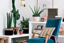 Plants / Pflanzen / Plantas