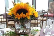 Flowers for the wedding! / by Katie Shanley