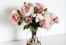 Flower Arrangements and Floral Inspiration / Floral arrangements + styling. / by Anne Sage