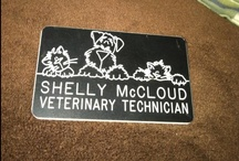 "Vet Techs Rock!! / I have worked in a veterinary clinic setting for 16 years. I started out in the late 80s as a kennel worker, moved up to reception/vet assistant, and after working at my last clinic for 8 years-the doctors gave me the title of ""Vet Tech"". I know RVTs don't really consider you a tech until you've had the schooling, but I've paid my dues and did everything in those clinics to earn the title that I am so very proud of. Yes, I have the highest respect for RVTs, but I feel I've worked my way there 2! / by Shelly Hilliard McCloud"
