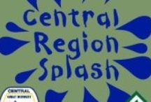 2013 CRV SPLASH / Come and experience lush indoor water parks, cozy lodges, and friendly people at the first Central Region Event on April 12th-14th, 2013. The Wilderness Resort in the Wisconsin Dells offers four indoor water parks, mini golf, go karts, and a host of other activities. The cost is $89 before March 1st, $105 after, and includes lodging, food, and water park admission. Don't miss this exciting opportunity to meet your Regional officers, and Venturers around the Central Region.