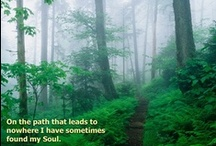 Wilderness Quotes / for resources for the Venturing Ranger Wilderness Survival requirement, see http://crventuring.org/Ranger_Award_Resources/Wilderness_Survival