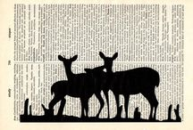 Paper / by Lisa Hull