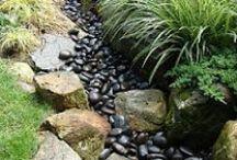garden ideas I love / by Sheryl Rootenberg Westerman
