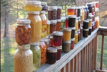 Recipes: Canning & Preserving / by Erin Miedema Dewese