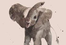 elephants. / by taylor.