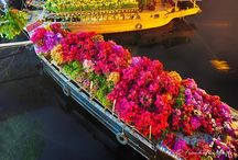 Vietnam / Our travels to Vietnam