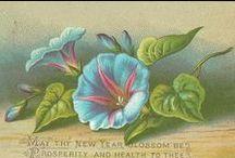 Printables- floral  purple/blue