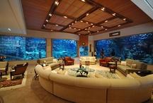 Dream Home Ideas / by Victoria Miller