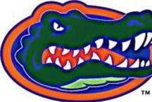 go gators!!!!! / by Libby Kader