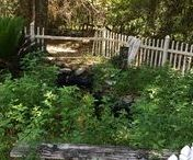 Backyard Pond Ideas / Ideas and inspiration for building backyard and DIY ponds