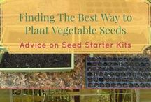 Vegetable Container Gardening Tips and Hacks / Vegetable container garden ideas. From how to successfully plant vegetables in pots to ensuring they stay healthy and produce a harvest for you. Vegetable container garden DIY.