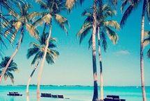 Tropical/Ocean / by Charlene Kristina