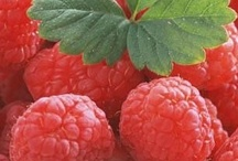 Raspberry 2013