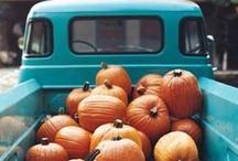 Autumn Market 2013