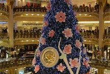 Christmas Trees of all Sorts / by Debbie Lewis