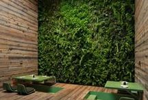 """Amazing Artificial Trees, Boxwood, Flowers and More! / Faux ever green! Featuring amazing artificial trees, flowers and boxwood greenery...everything looks so real...it's time to Go """"Green""""! Go Artificial!"""