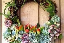 innovative ideas for indoor succulents and plants! / Container ideas for your indoor succulents, flowers and plants! Get creative!