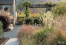 Lyndale: Exterior & Garden / by Mary Stonecypher Maslow