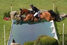 Show Jumping! / Show jumping is the last of three phases at Equestrian Triathlons. Show jumping examines precision, agility, and technique while jumping over high obstacles and turning when the rider commands. It is also a test of condition and focus after completing the dressage and cross-country phases.