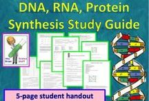 DNA, RNA, Protein Synthesis / by Science Stuff