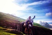 Jernaldergarden - The Iron Age Farm