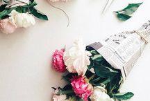 Floral | Pink