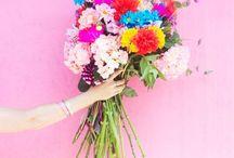 Floral | Multi