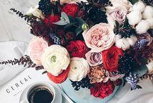 Floral | Roses