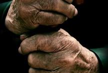 Hands, feet, paws
