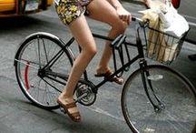 Pod Loves Bikes