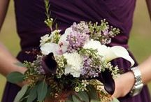 Wedding Planning / Planning for my wedding! Colors are aubergine and pale sage, with silver/grey and white/ivory accents.