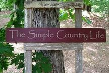Mulberry & BlackBerry Junction /   Keep smiling and pinning....pin all you want....no limits on my boards. / by Donna Hardway Yoho