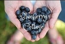 Cottage on Blue Berry Hill / If you like it...pin it!  No limits. / by Donna Hardway Yoho