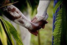 Papua New Guinea / Zwischen Nord- und Süd-Pazific liegt der Inselstaat Papua-Neuguinea. Die blütenreiche Landschaft wird dominiert von einer 200 Kilometer breiten Gebirgskette, die bis weit über 4000 Meter reicht – die Höhe und das warm-tropische Klima bieten perfekte Bedingungen für den Kaffeeanbau.