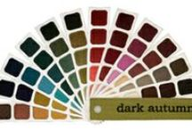 I'm a Dark Autumn / Color theory learning!