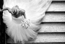 Fotografia | Casamento