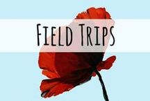 Virtual Field Trips / Virtual Field trips for your family, homeschool, or classroom. Take a trip without leaving your living room!