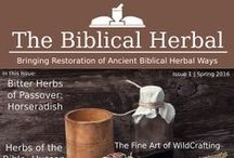 The Biblical Herbal E-Magazine / Bring Accurate Herbal Knowledge Into Your Home with The Biblical Herbal E-Magazine- A quarterly e-magazine restoring the ancient biblical roots of herbal healing. TBH now has a Pinterest - https://www.pinterest.com/biblicalherbal/