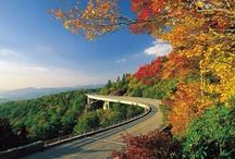 Road Trip, USA / Take the scenic route across America!