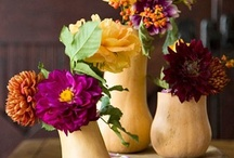 Thanksgiving table / by Darlene Perry
