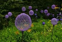 Garden / by Ginny Sanderson