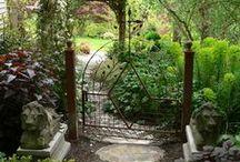 Flowers and Gardens / by Jennie Beahm